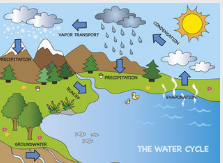 water cycle in hindi