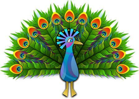 Peacock in Hindi ( मोर पक्षी निबंध )