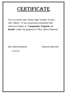 certificate for school project